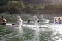Le canoe del Tirrenia Todaro di Roma sullo specchio acqueo del Lago Turano