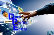 Data Profile Entity