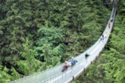 Colombia: strage di turisti per crollo di un ponte