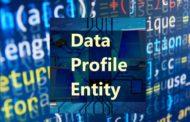 Le nuove tecnologie della comunicazione avanzata con il format Data Profile Entity