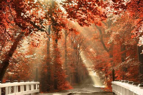 Finita l'estate; oggi equinozio d'autunno
