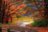 Equinozio d'autunno in clima d'estate, alle 3.54 il passaggio dell'uguaglianza giusto e perfetto